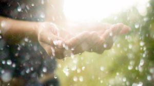 Armazenar Água da Chuva Para Utilizar em Casa Pode Ser Mais Fácil do Que Você Imagina